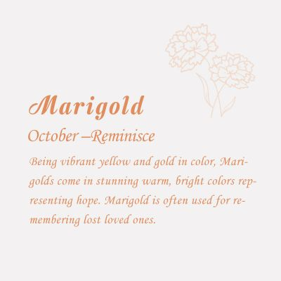 Marigold-October Birth Flower Disc Necklace With Birthstone