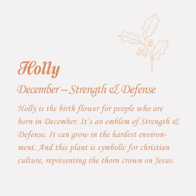 Holly-December Birth Flower Disc Necklace With Birthstone